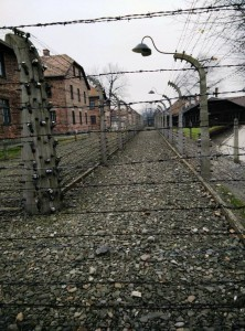 Barbed Wire Fence, Auschwitz-Birkenau Poland, Spotlight Europe