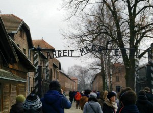 Visit to Auschwitz-Birkenau Poland, Spotlight Europe