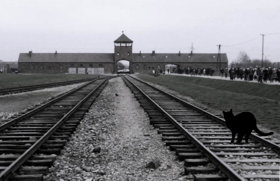Concentration camp in Auschwitz-Birkenau, Poland, Spotlight Europe